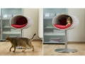 Cool-Furniture-Pets-6