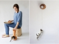 Designs-Modern-Pets-188