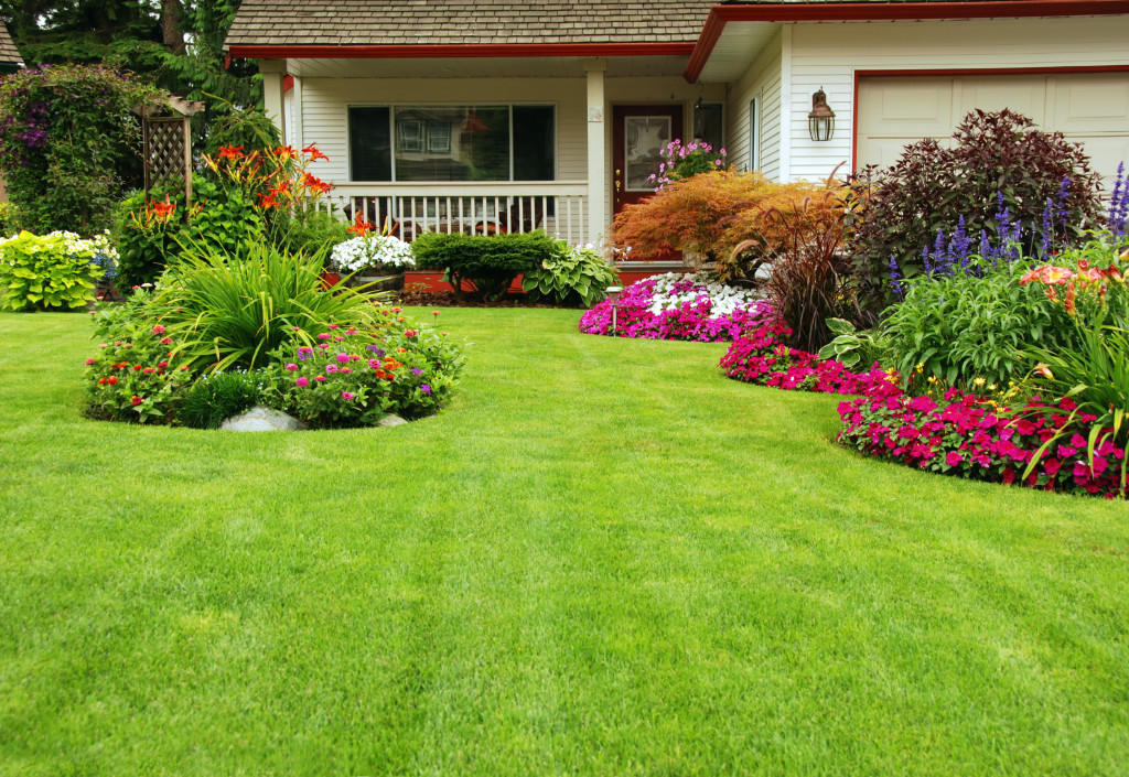 Tallahassee-lawns-yard-care-lawn-services-1024x705