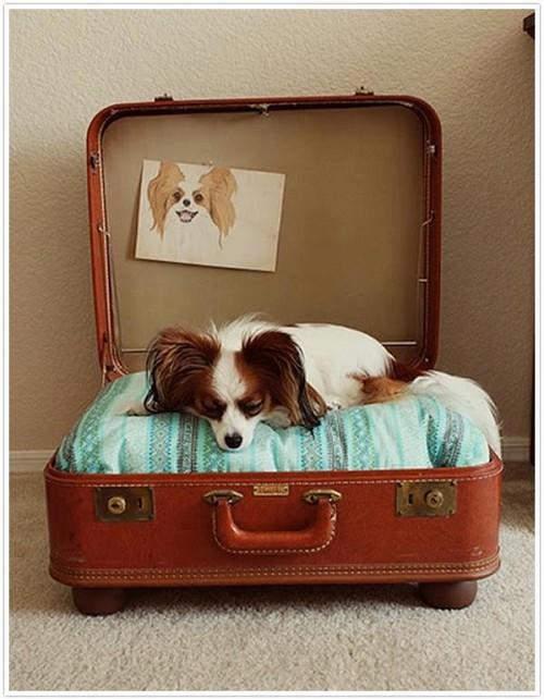 Кровать из старого чемодана