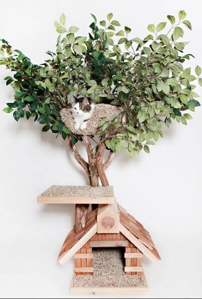 Дерево для котов - отличное жильё