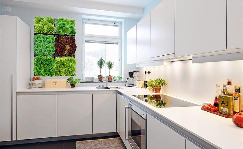 современный дизайн кухни 2016