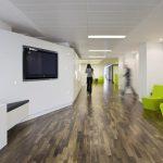 оформление офисного пространства